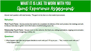 assess your client experience
